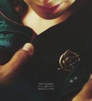 Movie Still: Katniss and The Mockingjay Pin
